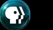 PBS2009 Blue