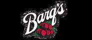 Barqs-e1470664080698