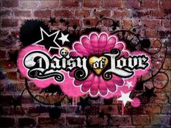 Daisy of Love.jpg
