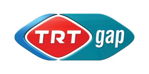 TRT GAP
