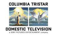 ColumbiaTriStarDomesticTelevisionPrintLogo