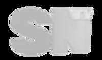 SNTV logo ending.png