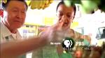PBS 2009's 11