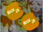 NJ ID 1988