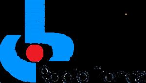 Radio France (1975-1985).png