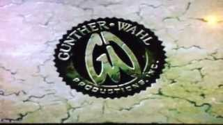 Gunther-Wahl Productions