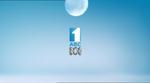 ABC2012IDGruenSweat