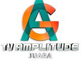 TV Amplitude (Juara)