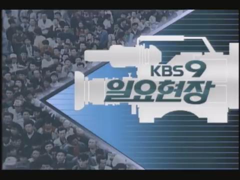 KBS 9 O'clock News Sunday Scene