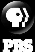 PBS 2009 Alternate 3D Vertical White Text
