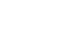 Polsat 2005