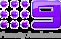 Nine Network Ending 2012 4