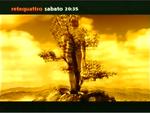 Rete 4 - tree 1999