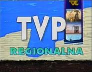 Regionalna1996