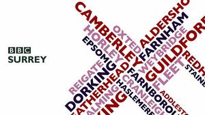 BBC Surrey 2008.png