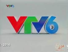 VTV6 (2012-2014)(2).png