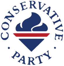 Team 2015 Conservative Party Volunteer 3cm Pin Badge Political Tory Logo