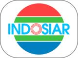 Indosiar/Logo Variations