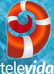 Canal 9 Televida (Logo veraniego - 2019).png