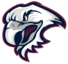 Side-decals-eagles