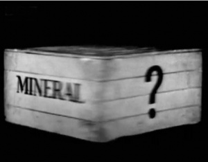 Animal, Vegetable or Mineral?