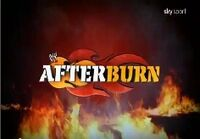 WWE After Burn New Logo.jpg