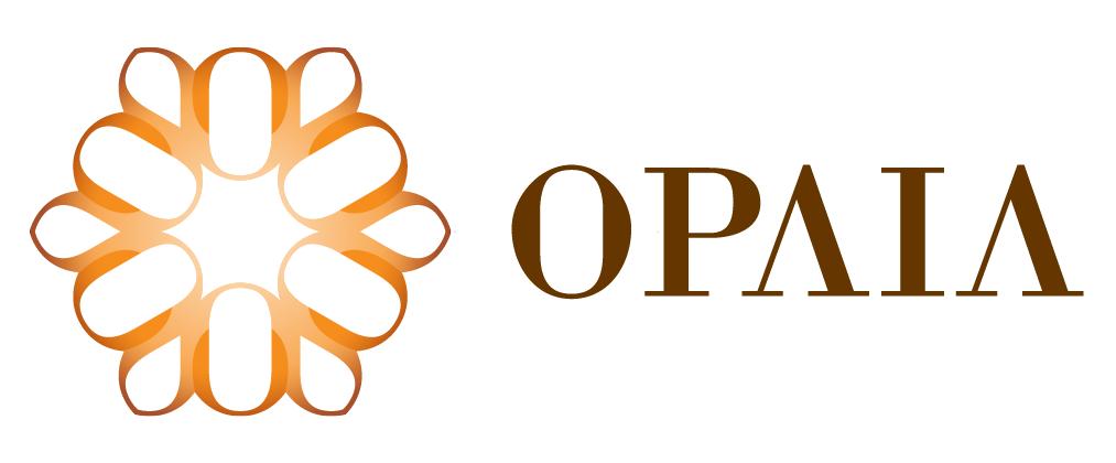 Grupo Opaia SA