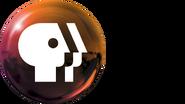 PBS2009 Orange
