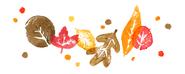 Autumn-2021-australia-6753651837109251-2x