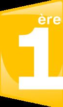 France 1ère logo.png