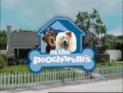 At the Poocharelli's.jpg