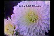 Prairie Public Television 1980 2