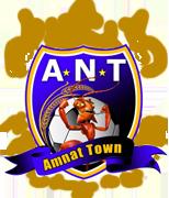 Amnat Town 2011.png
