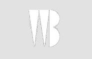 Warner Bros. Enterprises (1965 B)