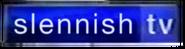 STV 3D logo 2003