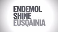 Endemol Shine Eusqainia ID 2015