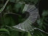 GRT Web 1
