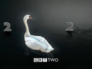 GRT Swans 1