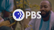 PBS system cue - Volunteer Gardeners - 2020