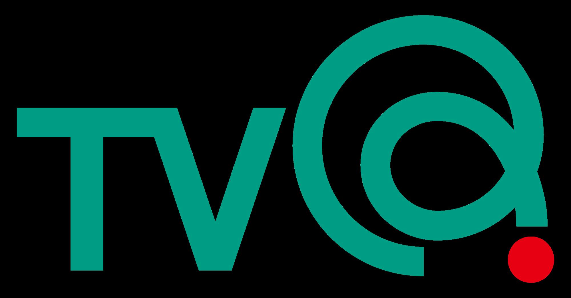 TVQ Kyugoku Broadcasting