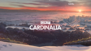 GRT Cardinalia ID - City View - Christmas 2015