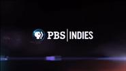 PBS system cue - Indies - 2013