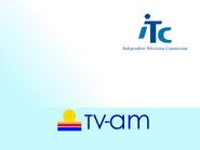 TVAM ITC slide 1991