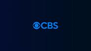 CBS ID 2020