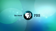 PBS system cue - Think Wednesday - 2014 - 2
