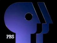 PBS ID 1989