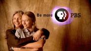 PBS system cue 2002 4