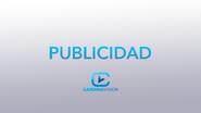Cardinavision 2010 commercial break