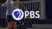 PBS system cue - Bubbles - 2020