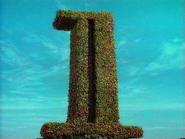 Grt1 hedge 1994